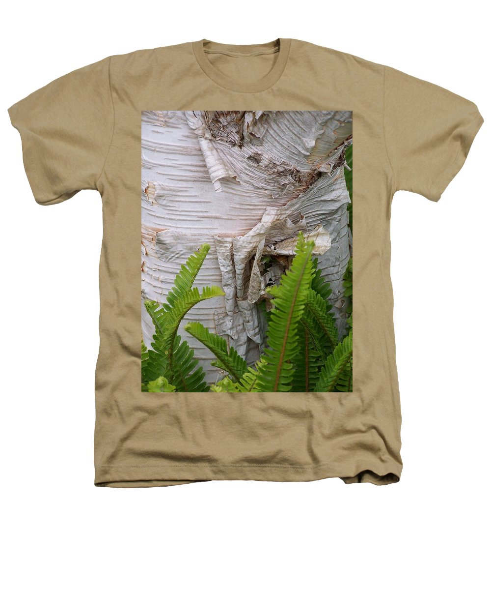 Tree Heathers T-Shirt featuring the photograph Birch Fern by Gale Cochran-Smith