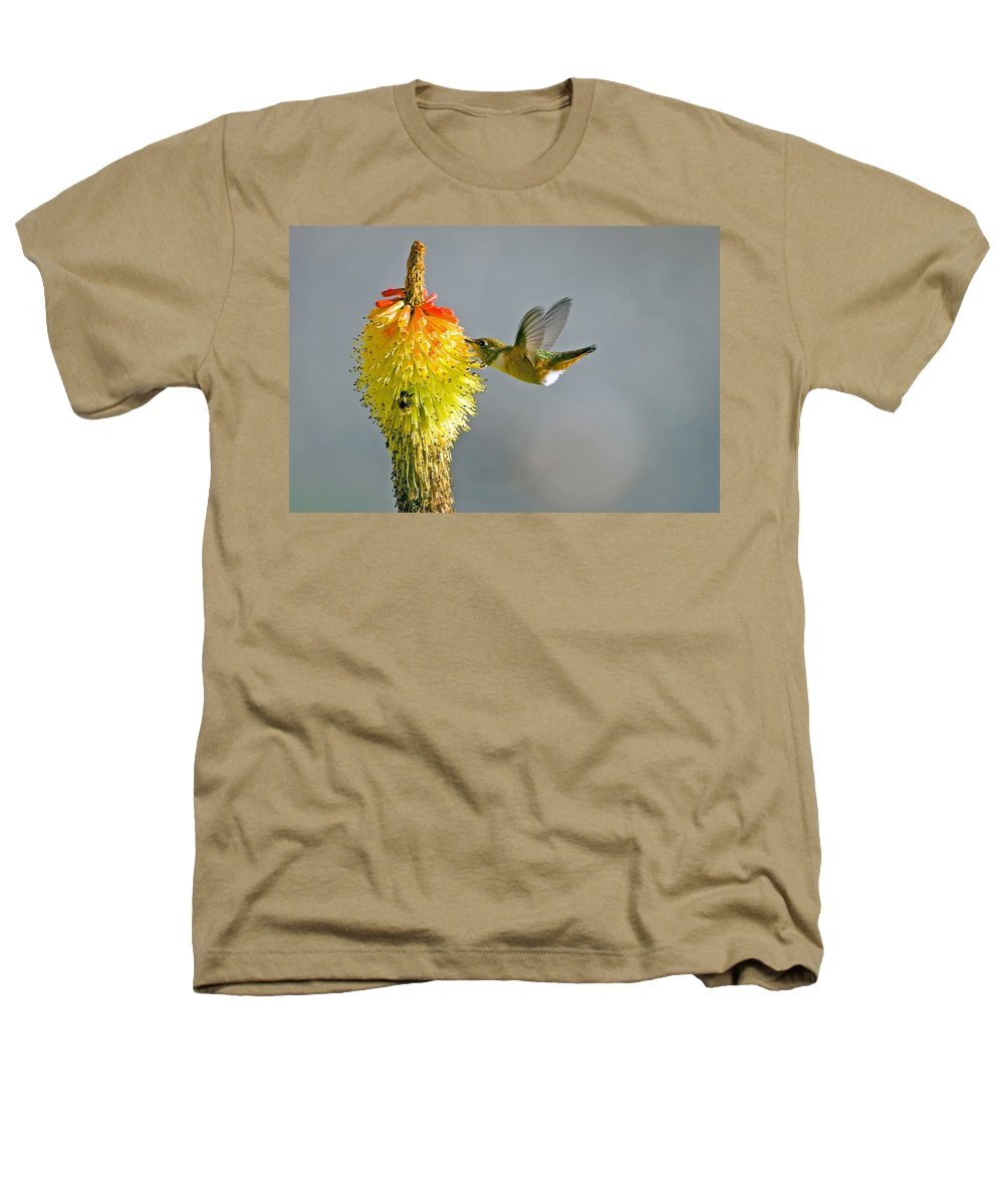 Hummingbird Heathers T-Shirt featuring the photograph Birds And Bees by Mike Dawson