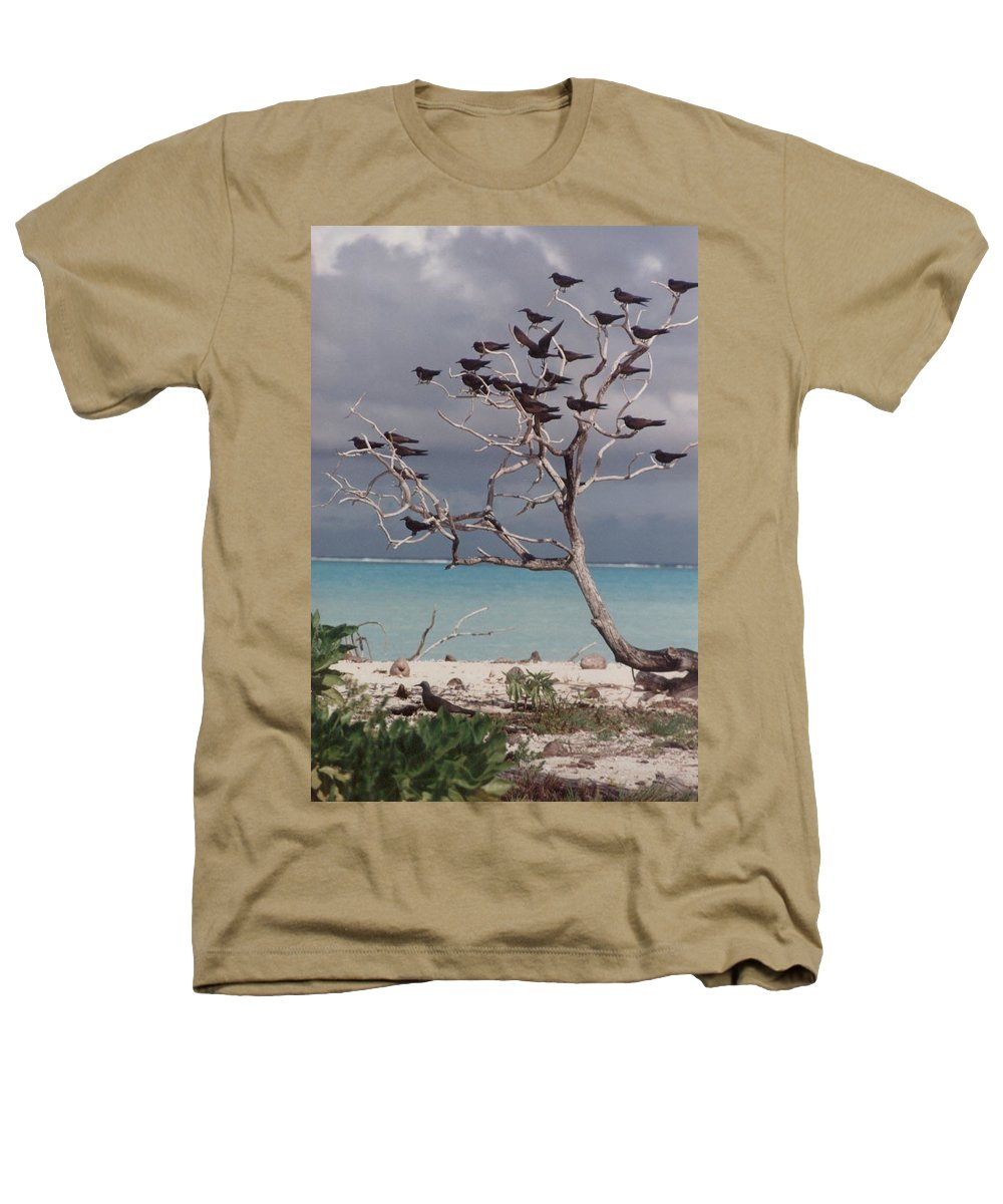 Charity Heathers T-Shirt featuring the photograph Black Birds by Mary-Lee Sanders