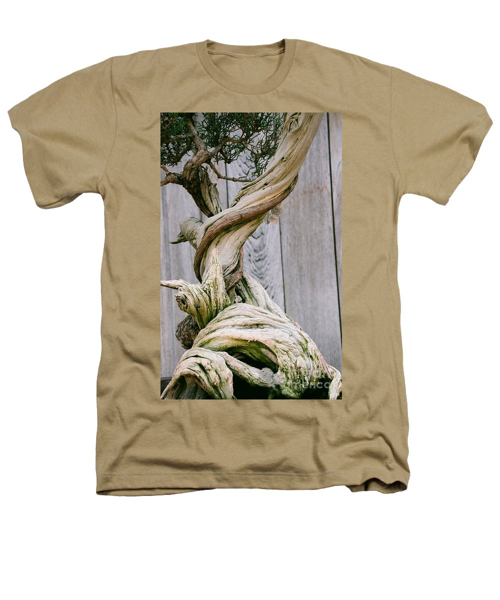 Tree Heathers T-Shirt featuring the photograph Bonsai by Dean Triolo
