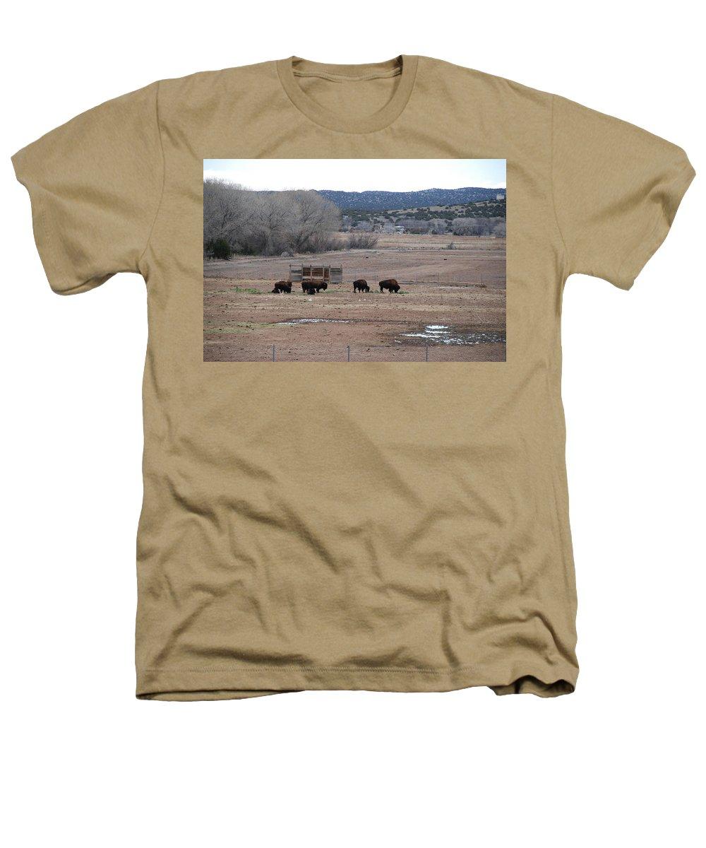 Buffalo Heathers T-Shirt featuring the photograph Buffalo New Mexico by Rob Hans
