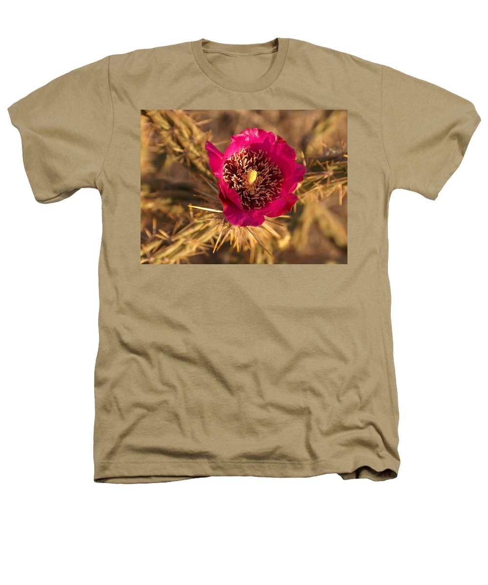 Cactus Flowers Wildflowers Heathers T-Shirt featuring the photograph Cactus Flower 1 by Tim McCarthy