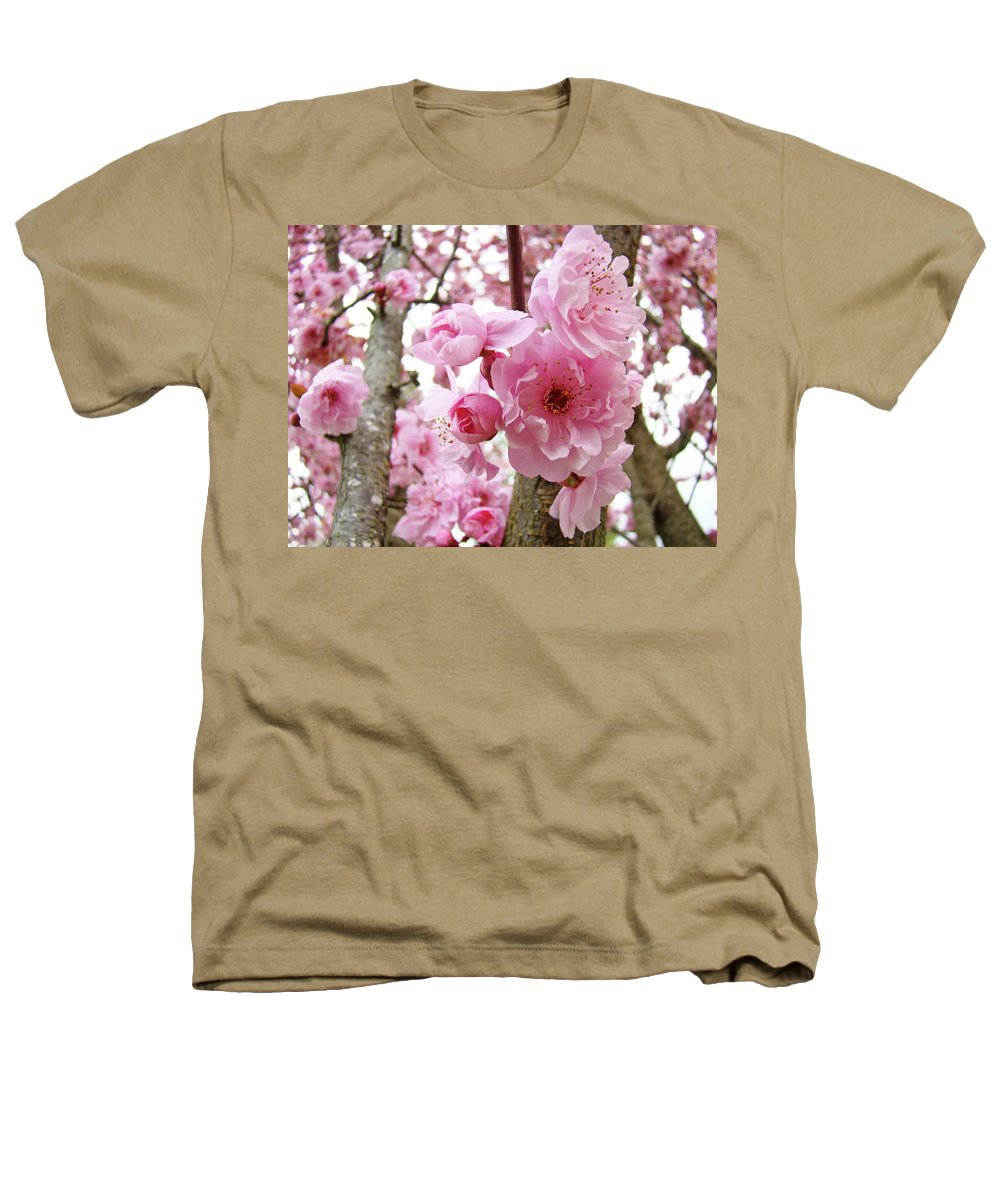 Nature Heathers T-Shirt featuring the photograph Cherry Blossoms Art Prints 12 Cherry Tree Blossoms Artwork Nature Art Spring by Baslee Troutman