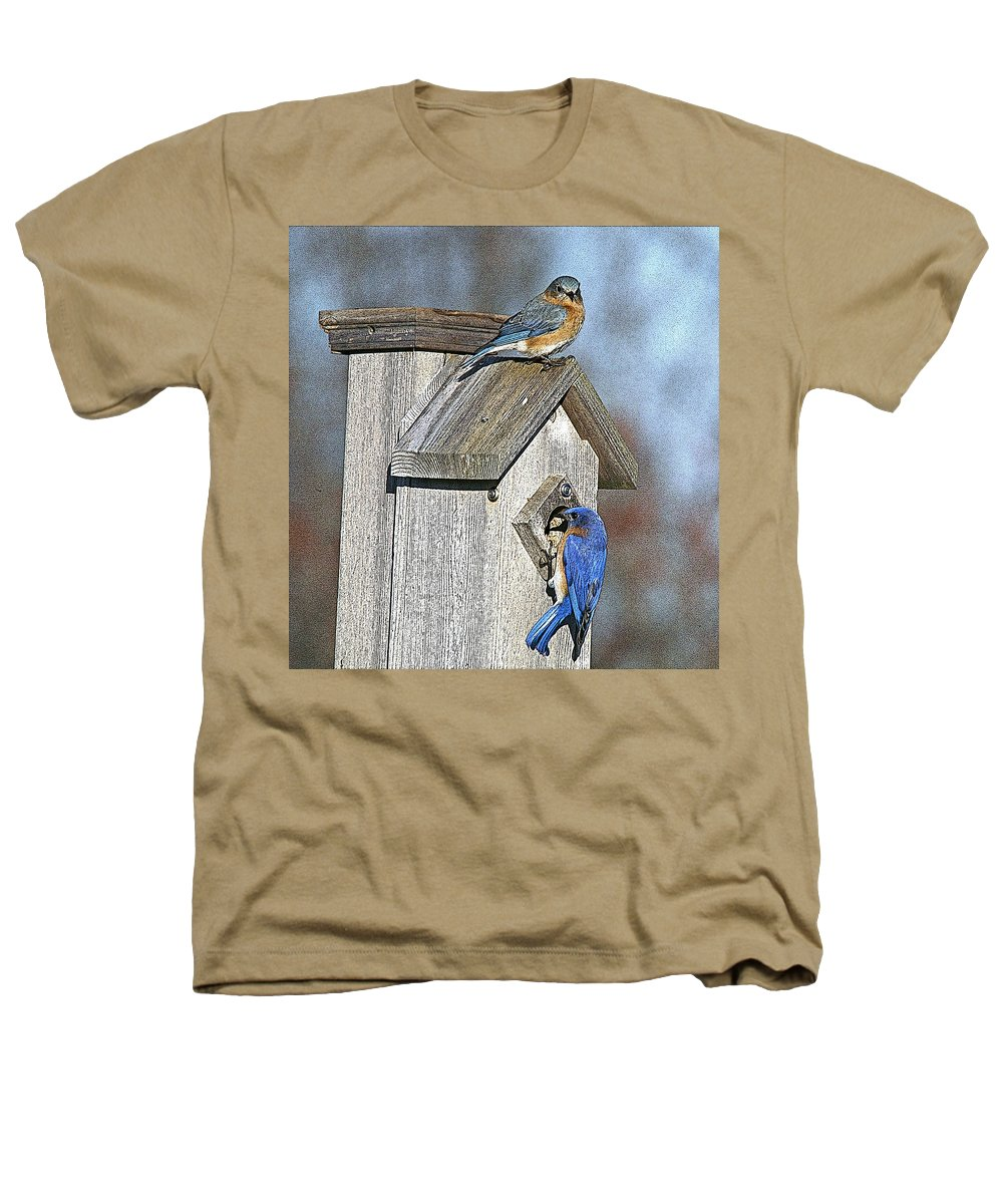 Nature Heathers T-Shirt featuring the photograph Cleaning House by Robert Pearson