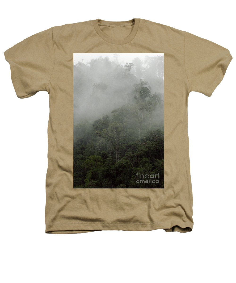 Rainforest Heathers T-Shirt featuring the photograph Cloud Forest by Kathy McClure