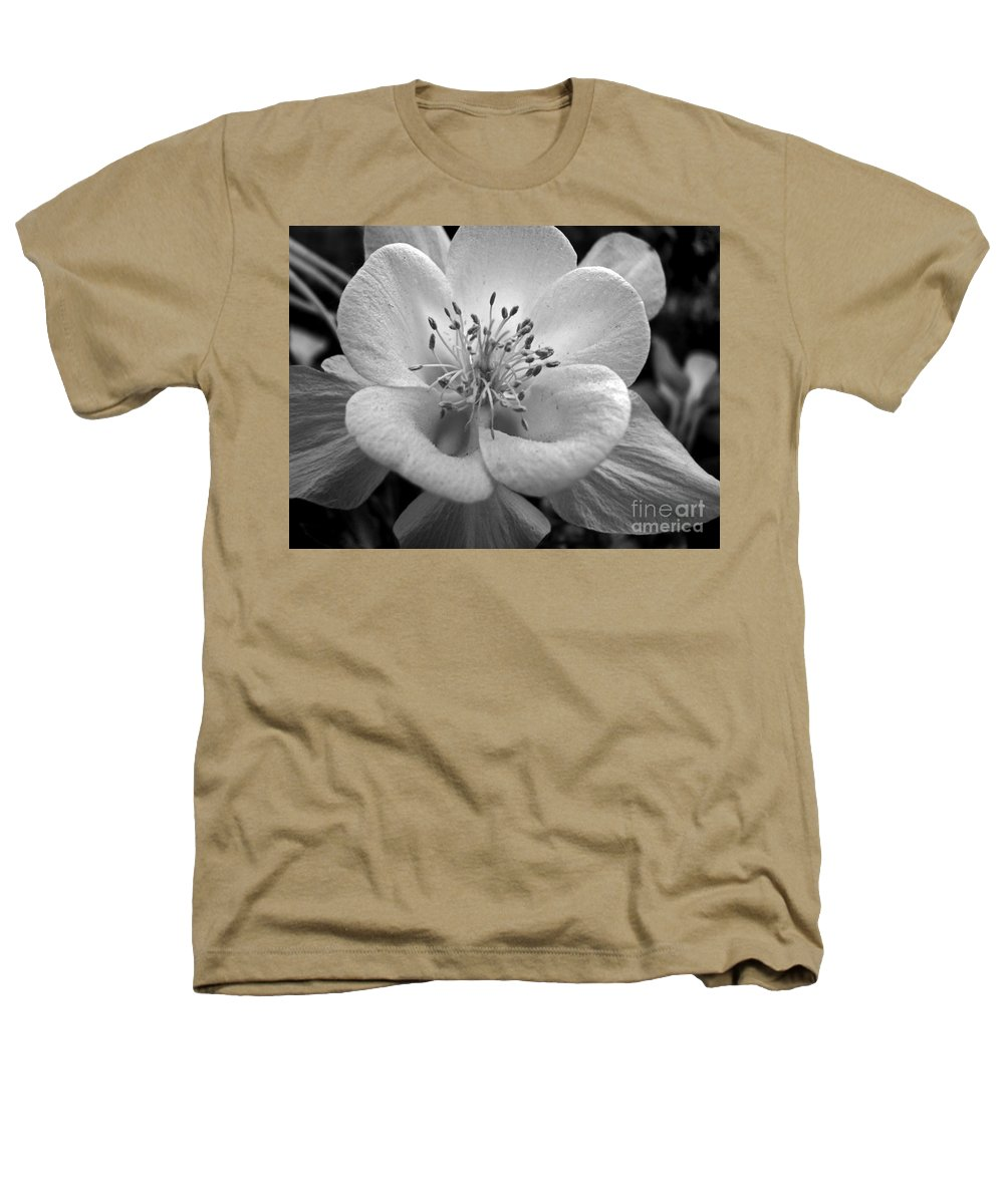 Flowers Heathers T-Shirt featuring the photograph Columbine by Amanda Barcon