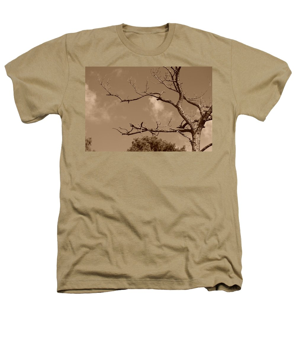 Sepia Heathers T-Shirt featuring the photograph Dead Wood by Rob Hans