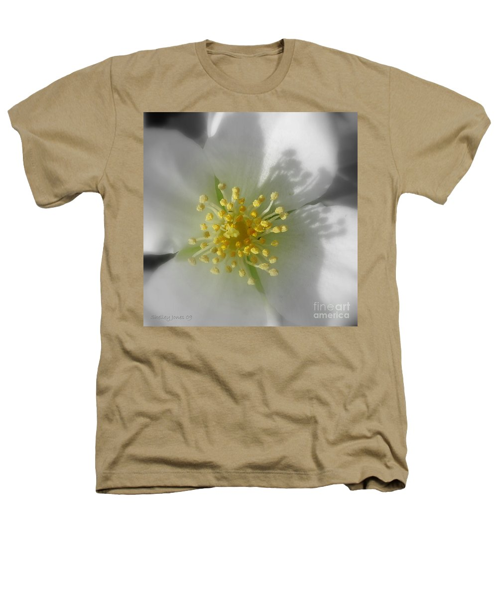 Photography Heathers T-Shirt featuring the photograph Dogwood by Shelley Jones
