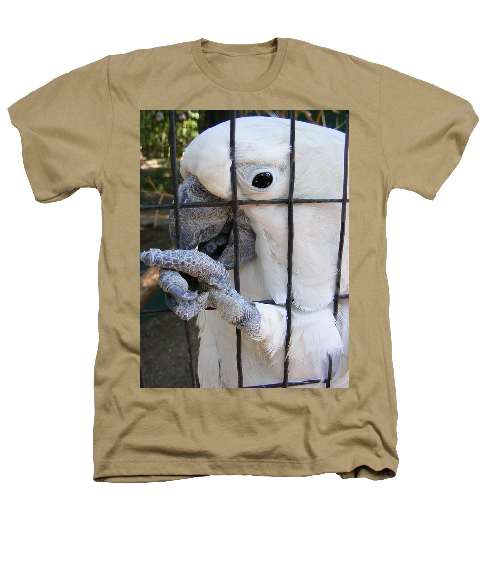Bird Heathers T-Shirt featuring the photograph Hand Me The Key Please by Ed Smith