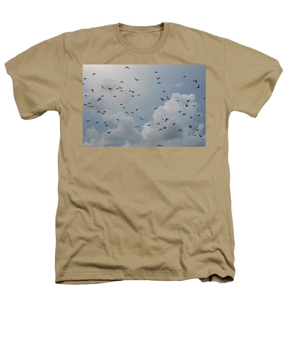 Birds Heathers T-Shirt featuring the photograph In Flight by Rob Hans