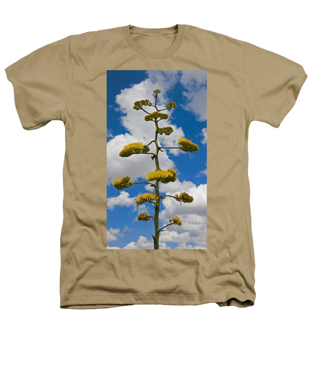 Blue Heathers T-Shirt featuring the photograph Jacobs Ladder by Skip Hunt