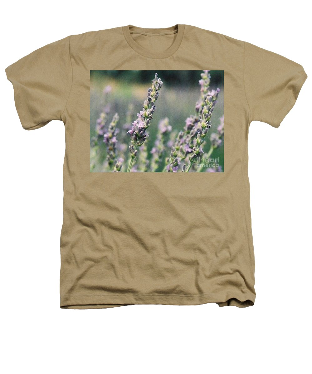 Flowers Heathers T-Shirt featuring the painting Lavender by Eric Schiabor