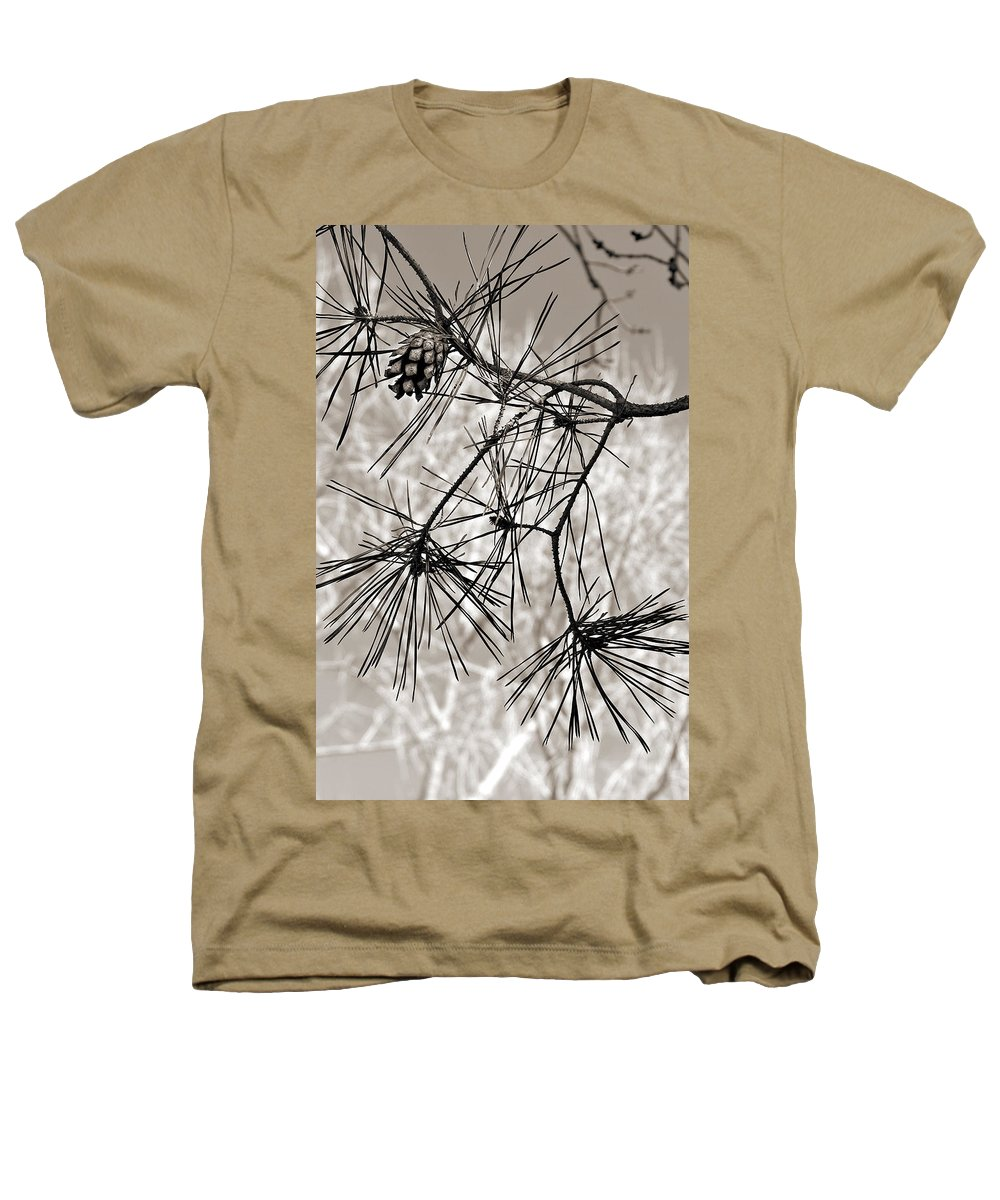 Tree Heathers T-Shirt featuring the photograph Needles Everywhere by Marilyn Hunt