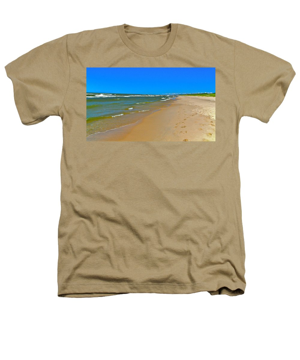 Sand Heathers T-Shirt featuring the photograph Oval Park In The Sun by Robert Pearson