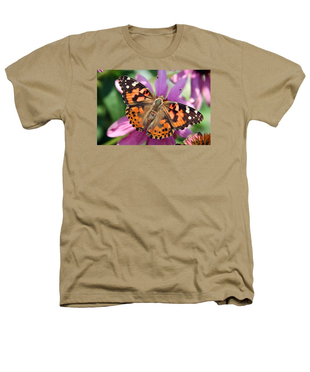 Painted Lady Heathers T-Shirt featuring the photograph Painted Lady Butterfly by Margie Wildblood