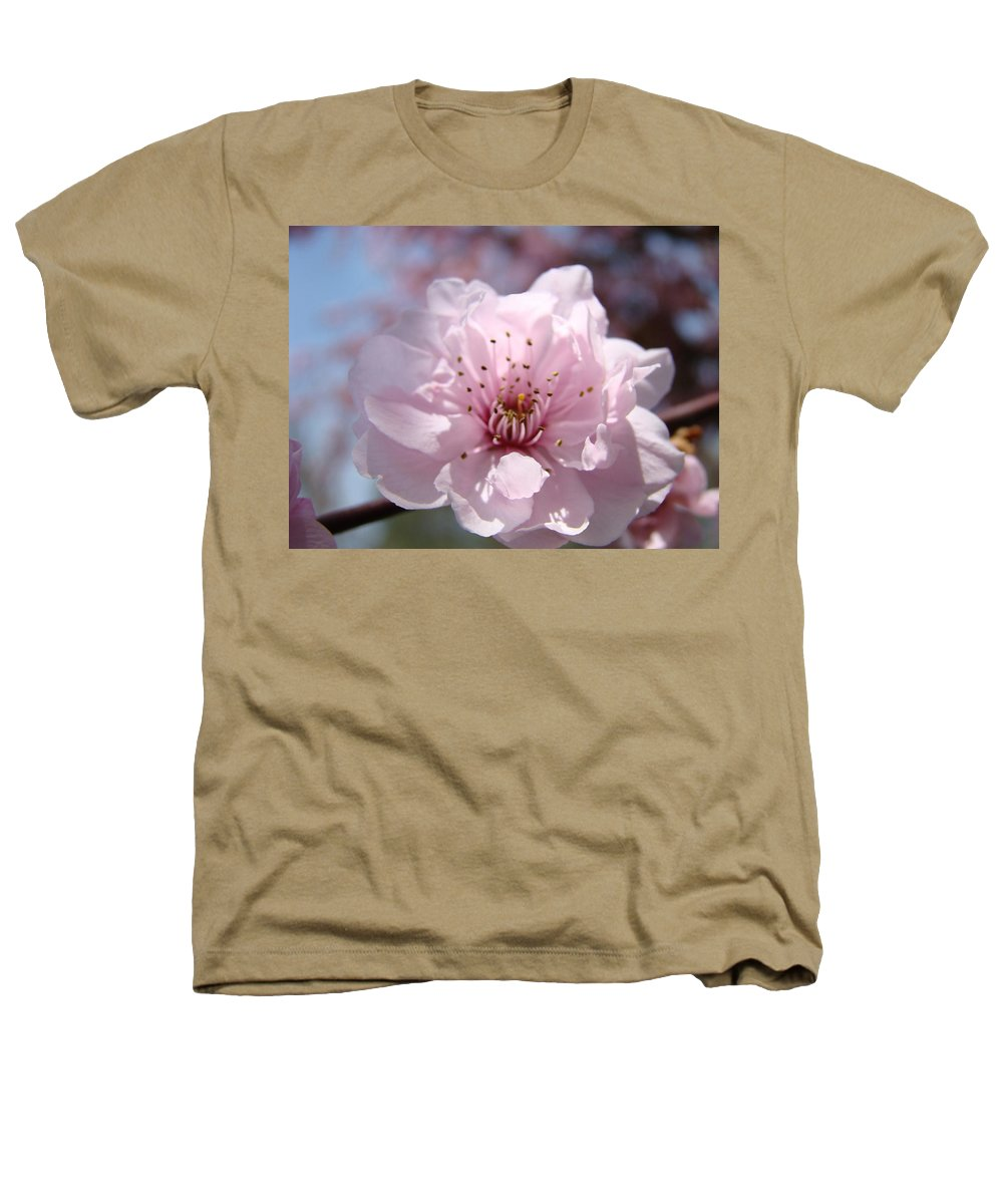 �blossoms Artwork� Heathers T-Shirt featuring the photograph Pink Blossom Nature Art Prints 34 Tree Blossoms Spring Nature Art by Baslee Troutman