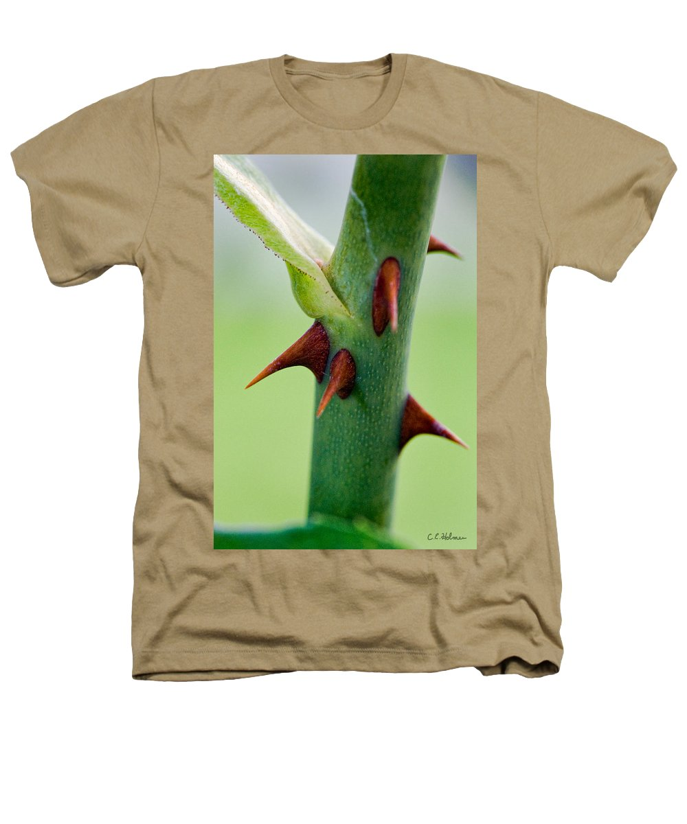 Thorns Heathers T-Shirt featuring the photograph Pointed Personality by Christopher Holmes