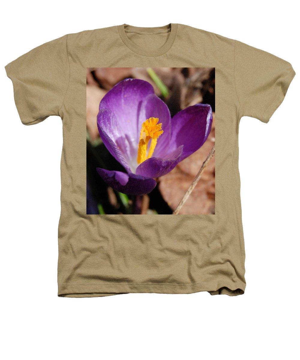 Digital Photography Heathers T-Shirt featuring the photograph Purple Crocus by David Lane