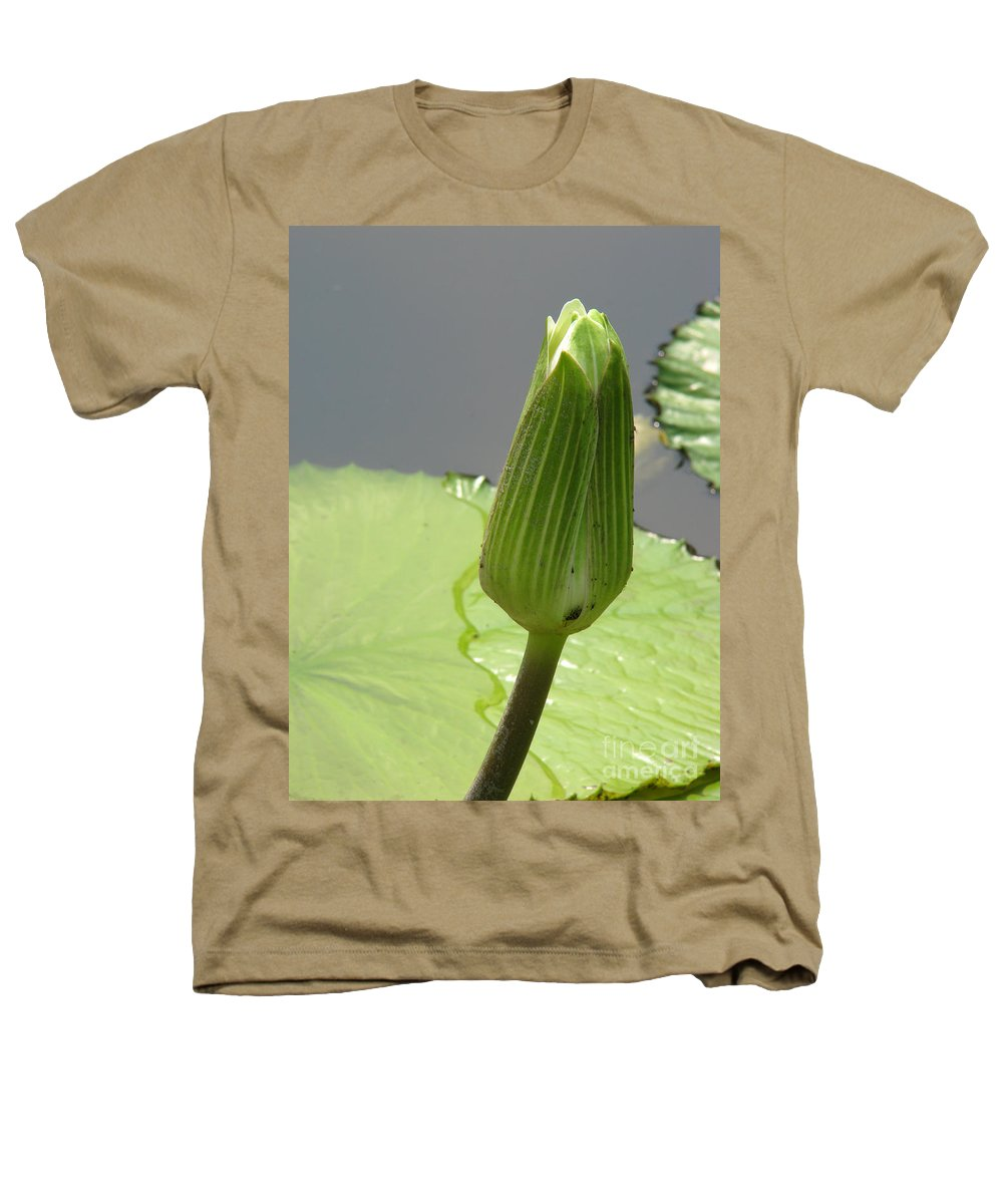 Lilly Heathers T-Shirt featuring the photograph Ready To Bloom by Amanda Barcon