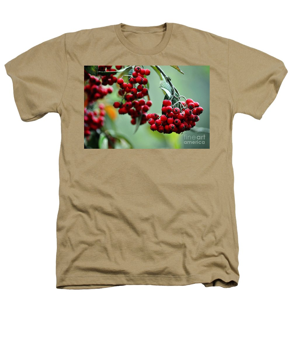 Clay Heathers T-Shirt featuring the photograph Red Berries by Clayton Bruster