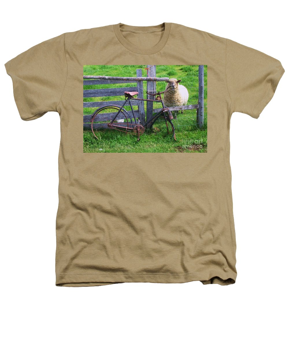 Photograph Sheep Bicycle Fence Grass Heathers T-Shirt featuring the photograph Sheep And Bicycle by Seon-Jeong Kim