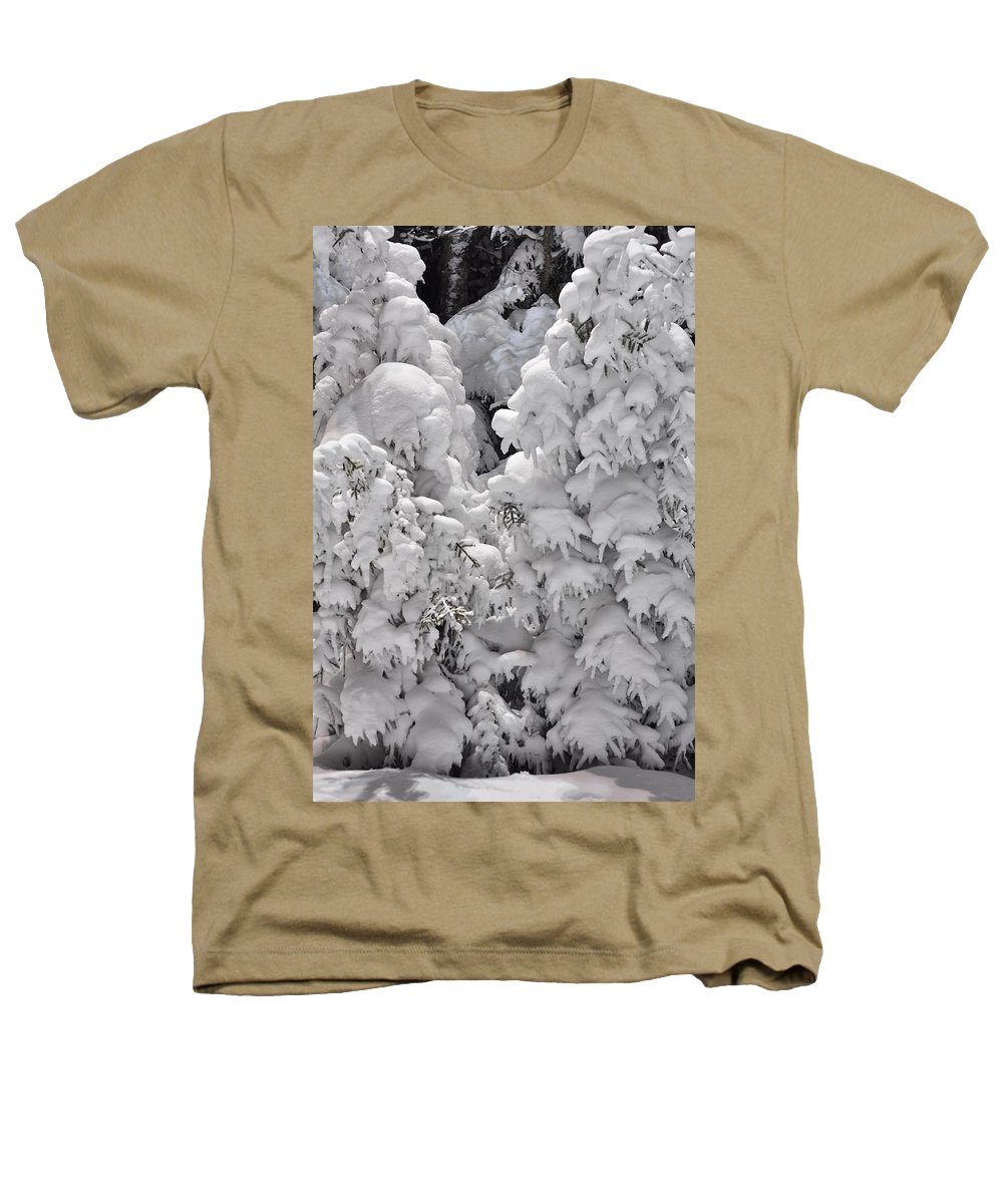 Snow Heathers T-Shirt featuring the photograph Snow Coat by Alex Grichenko