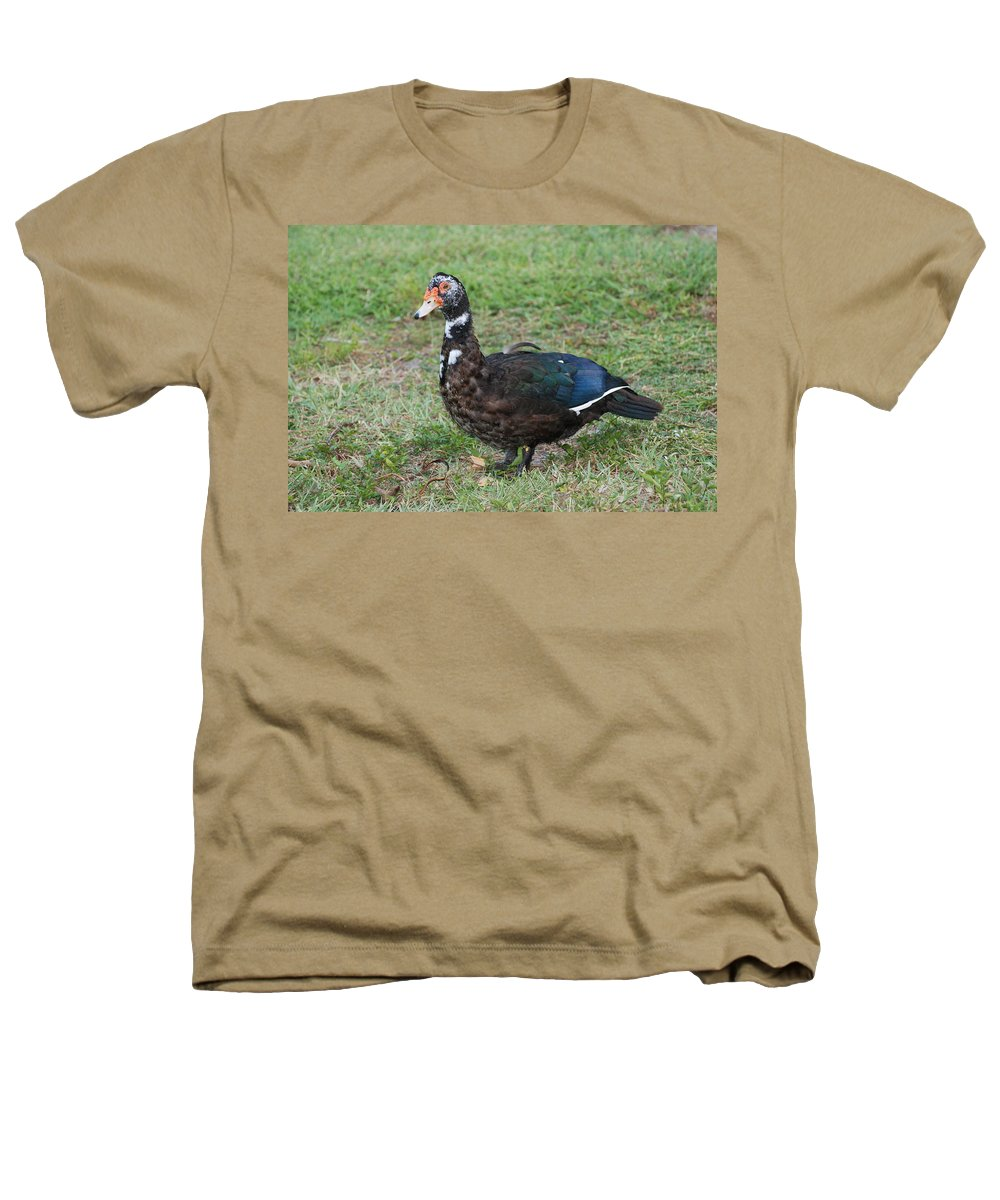 Ducks Heathers T-Shirt featuring the photograph Standing Duck by Rob Hans