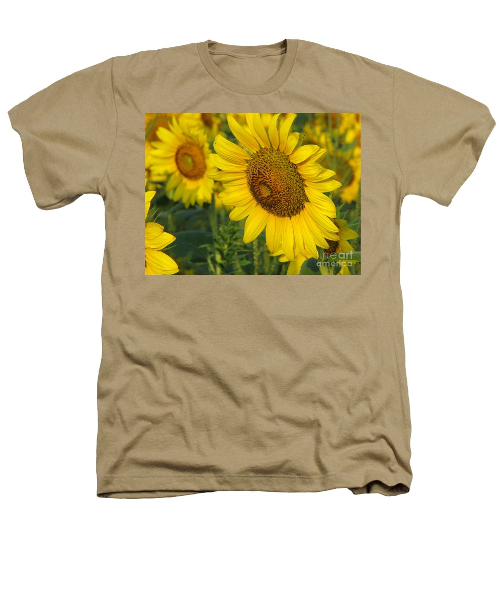 Sunflowers Heathers T-Shirt featuring the photograph Sunflower Series by Amanda Barcon