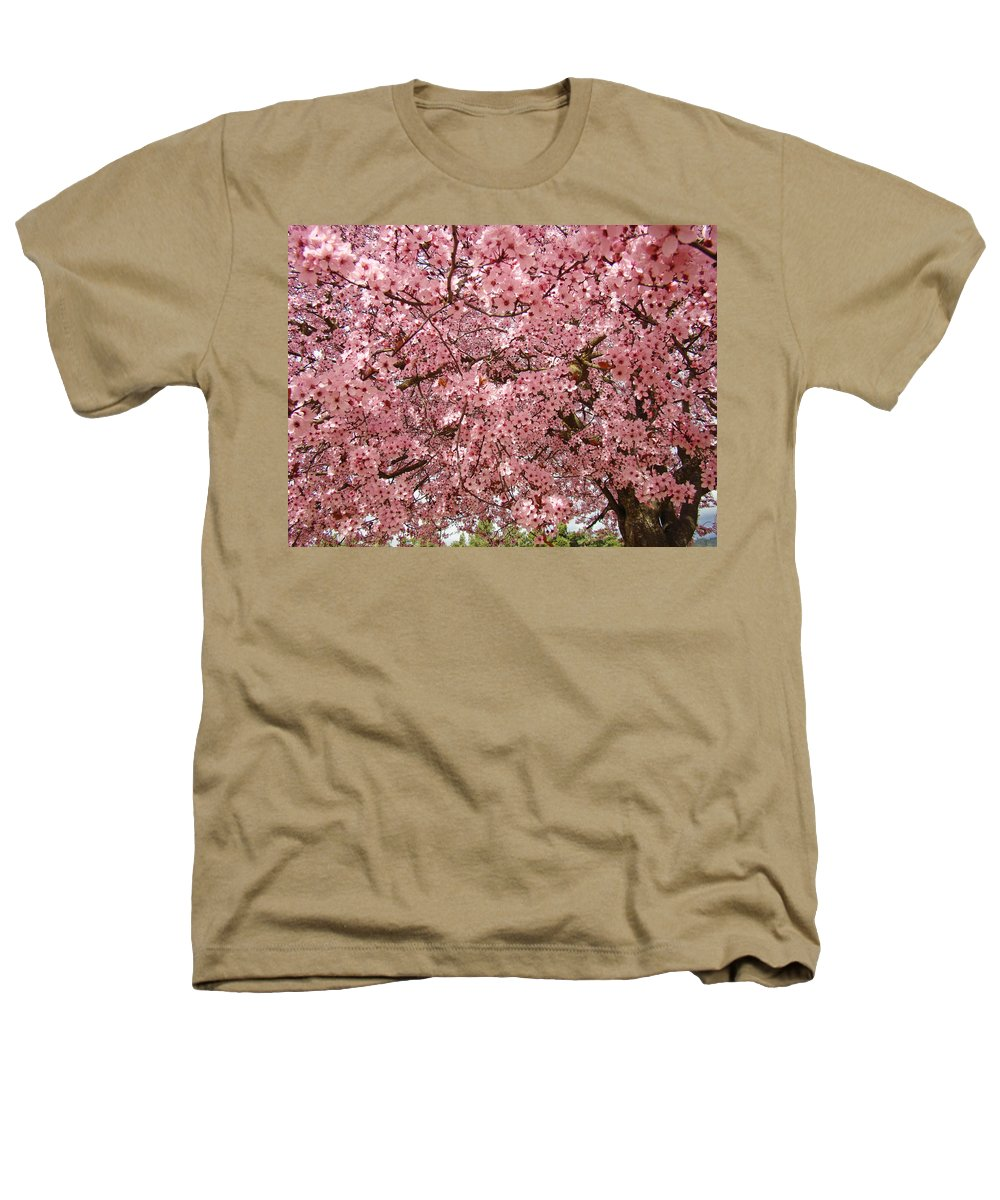 Tree Heathers T-Shirt featuring the photograph Tree Blossoms Pink Blossoms Art Prints Giclee Flower Landscape Artwork by Baslee Troutman