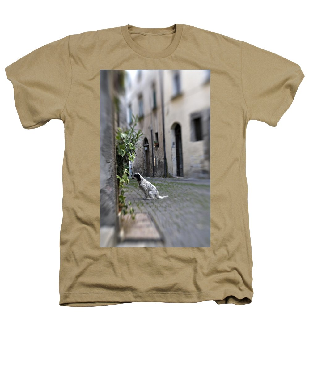 Dog Heathers T-Shirt featuring the photograph Waiting by Marilyn Hunt