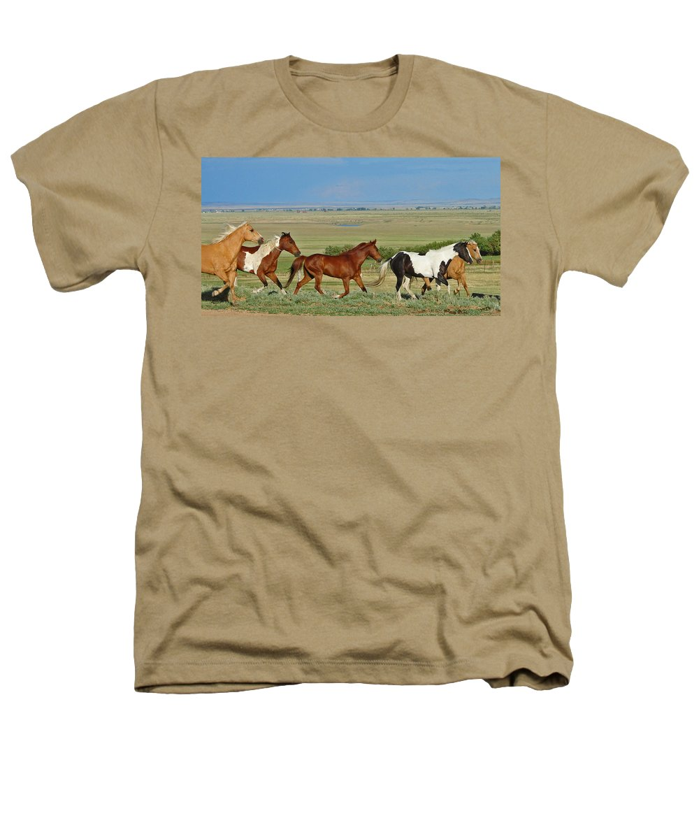 Herd Heathers T-Shirt featuring the photograph Wild Horses Wyoming by Heather Coen