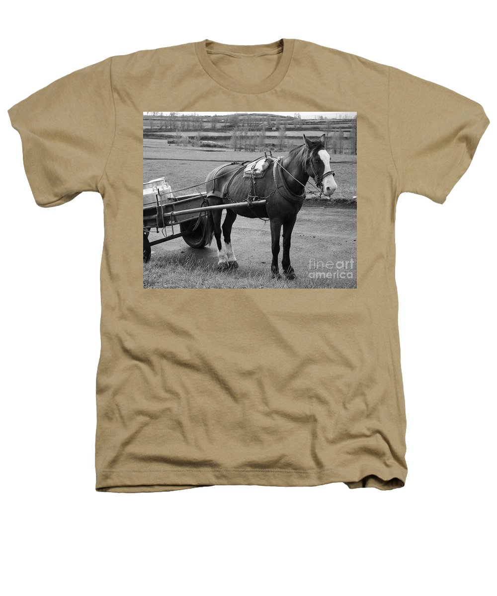 Cart Heathers T-Shirt featuring the photograph Work Horse And Cart by Gaspar Avila