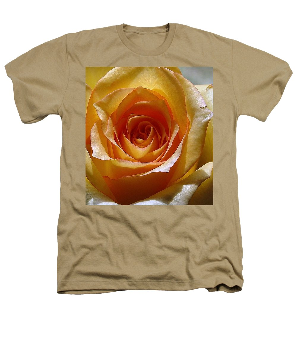 Rose Yellow Heathers T-Shirt featuring the photograph Yellow Rose by Luciana Seymour