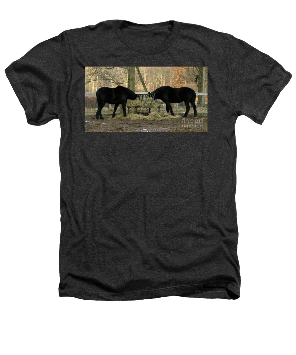 Horse Heathers T-Shirt featuring the photograph Barnyard Beauties by Ann Horn