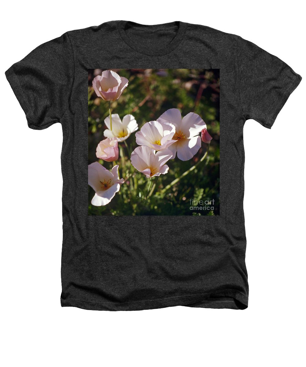 Flowers Heathers T-Shirt featuring the photograph Icelandic Poppies by Kathy McClure