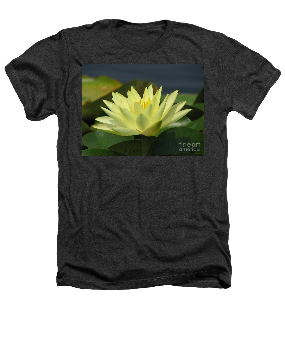 Lillies Heathers T-Shirt featuring the photograph Peace by Amanda Barcon