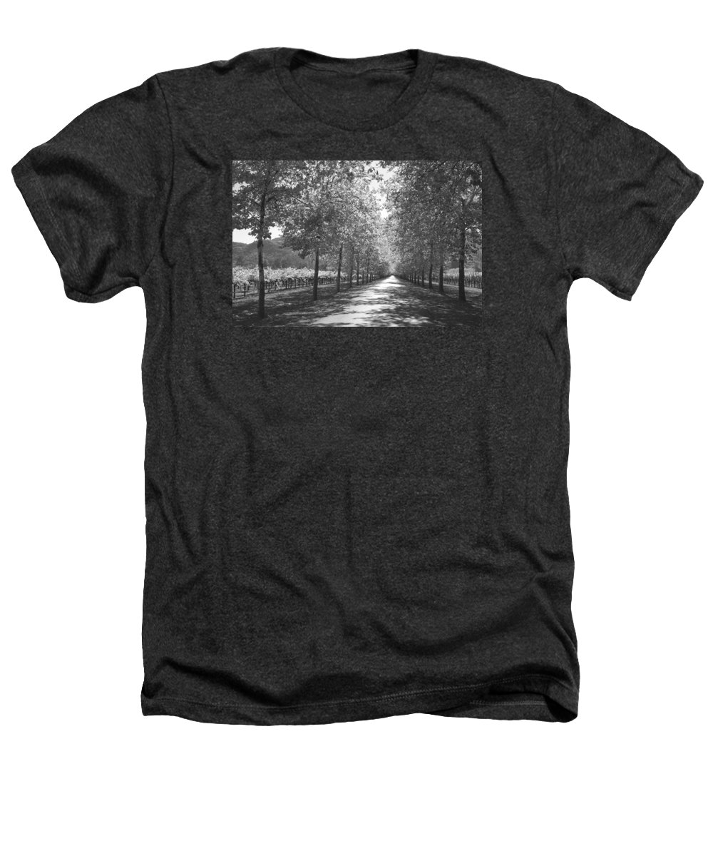 Black And White Heathers T-Shirt featuring the photograph Wine Country Napa Black And White by Suzanne Gaff
