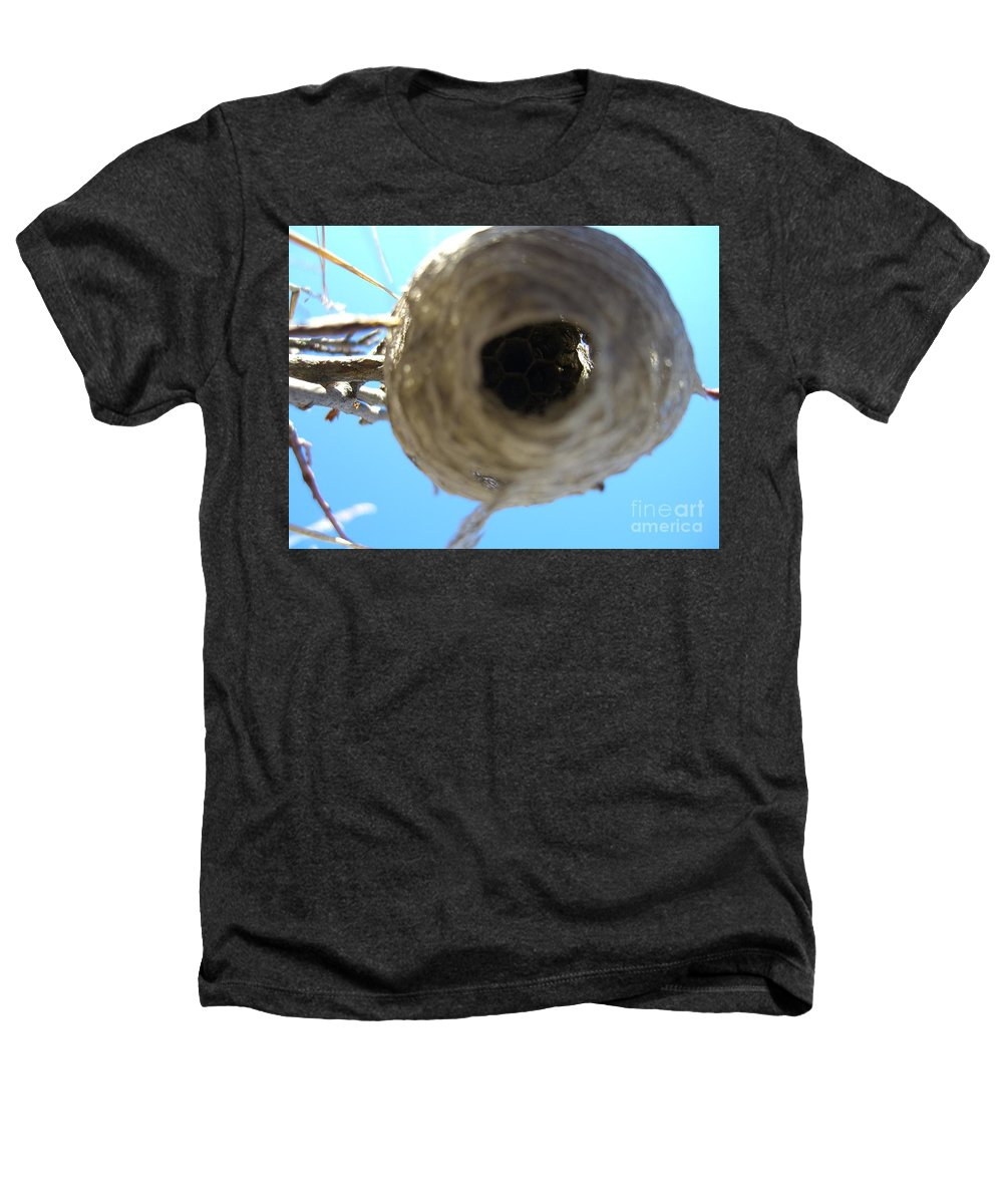 Photograph Bee Hive Blue Sky Branch Insect Heathers T-Shirt featuring the photograph Bee Hive by Seon-Jeong Kim