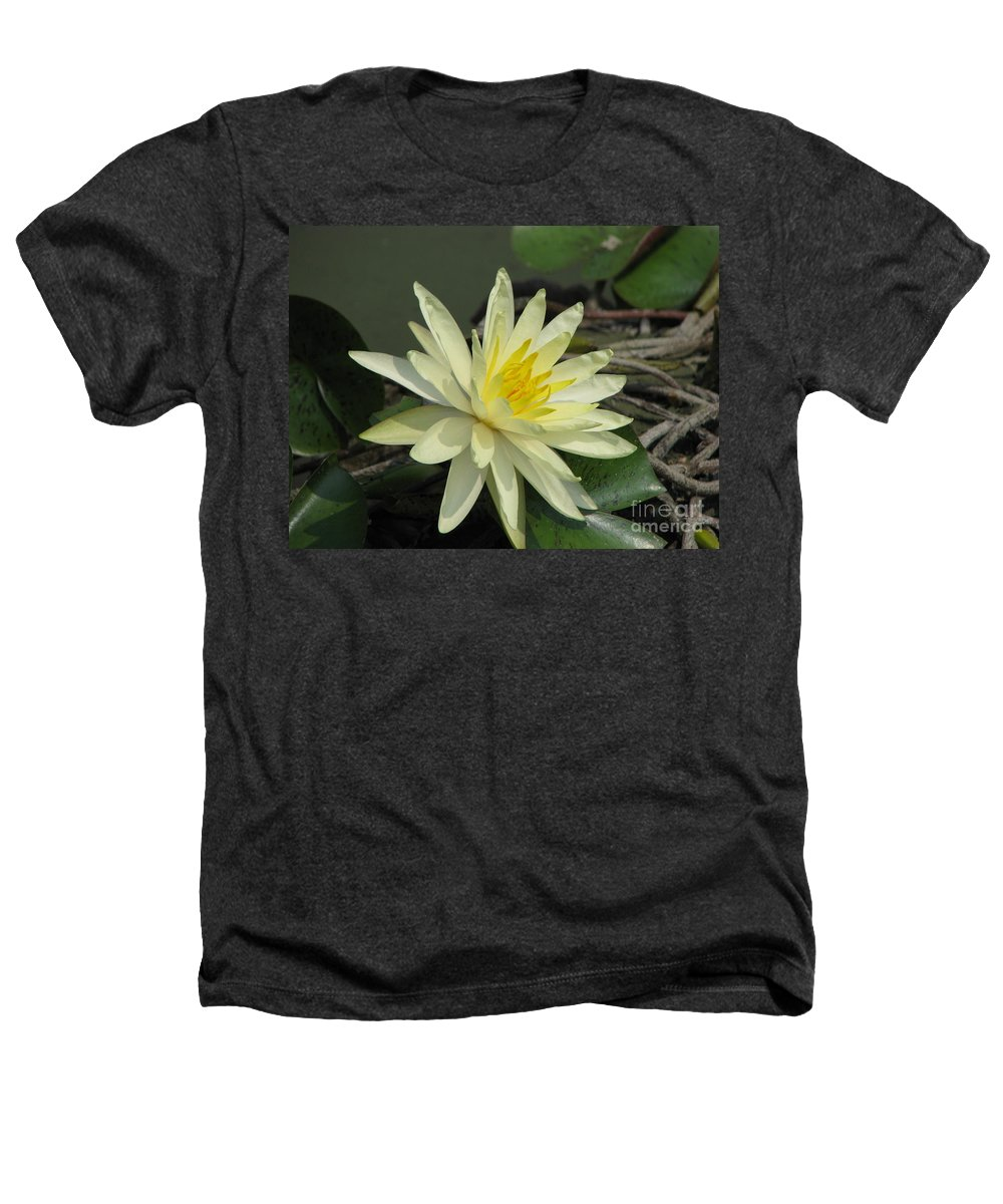 Lilly Heathers T-Shirt featuring the photograph At The Pond by Amanda Barcon