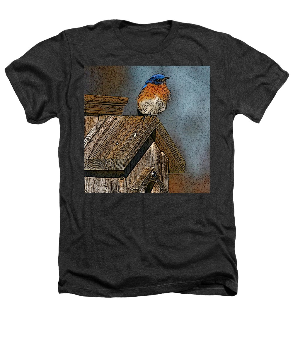 Blue Bird Heathers T-Shirt featuring the photograph Blue Bird Songs by Robert Pearson
