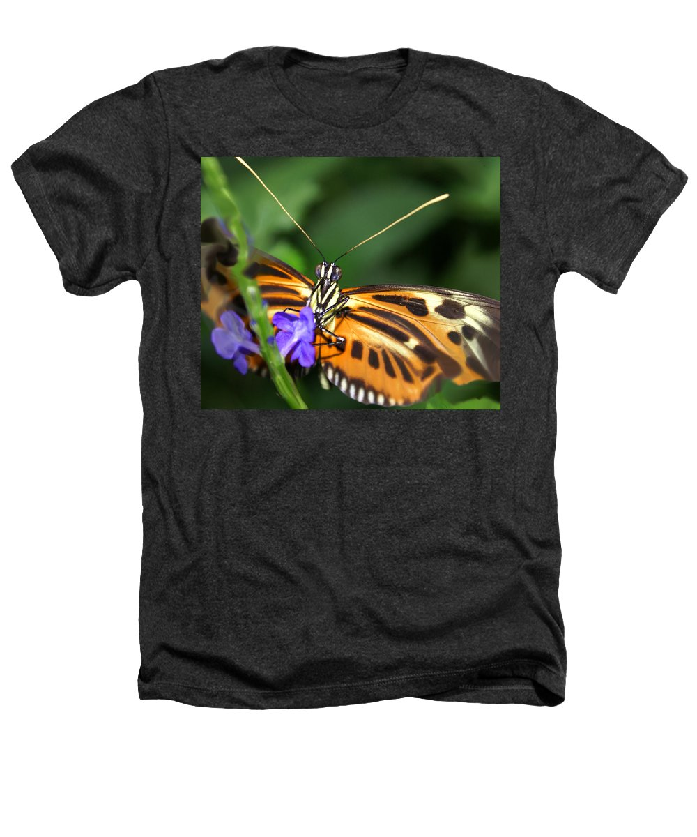 Butterfly Heathers T-Shirt featuring the photograph Butterfly 2 Eucides Isabella by Heather Coen