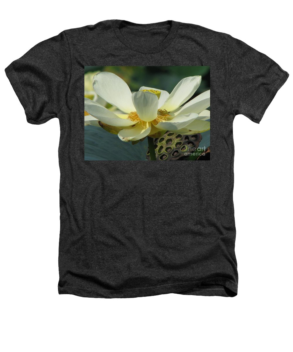 Lotus Heathers T-Shirt featuring the photograph Calm by Amanda Barcon