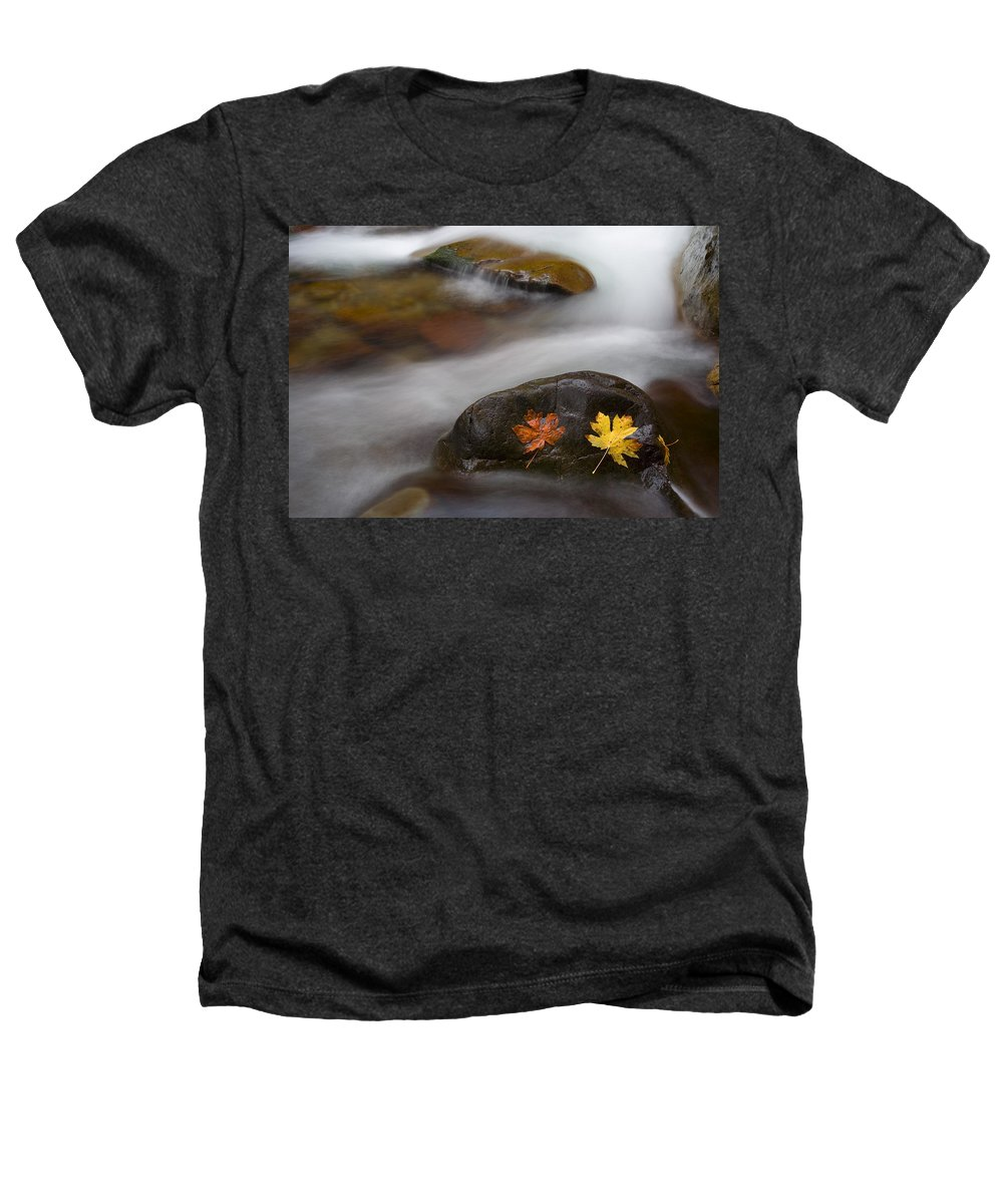 Leaves Heathers T-Shirt featuring the photograph Castaways by Mike Dawson