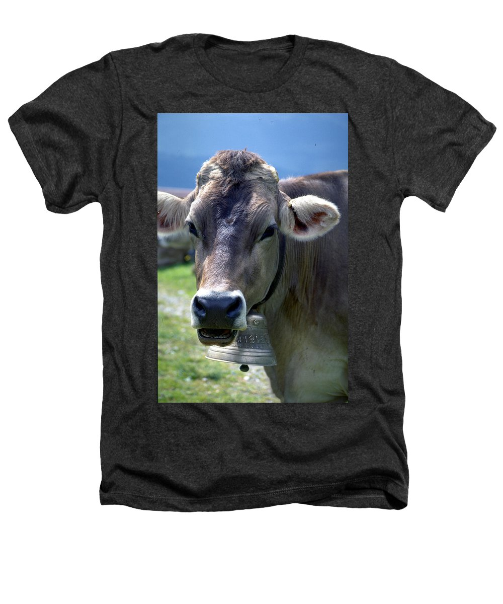 Cow Heathers T-Shirt featuring the photograph Cow by Flavia Westerwelle
