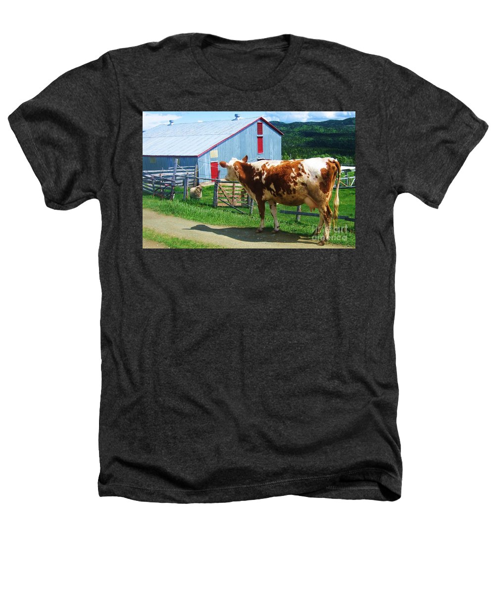 Photograph Cow Sheep Barn Field Newfoundland Heathers T-Shirt featuring the photograph Cow Sheep And Bicycle by Seon-Jeong Kim