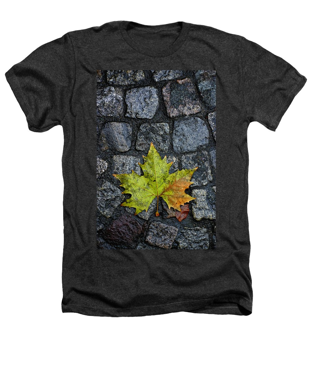 Nature Heathers T-Shirt featuring the photograph Deville by Skip Hunt
