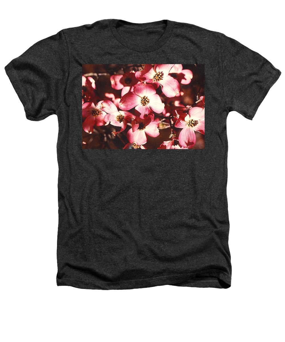 Dogwood Heathers T-Shirt featuring the photograph Dogwood Harmony by Nancy Mueller