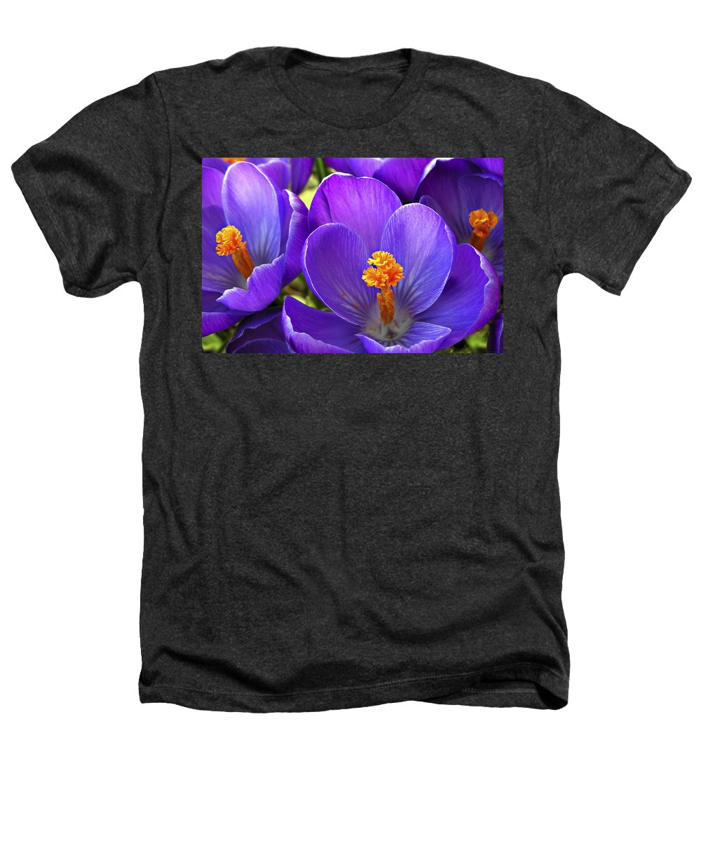 Flower Heathers T-Shirt featuring the photograph First Crocus by Marilyn Hunt