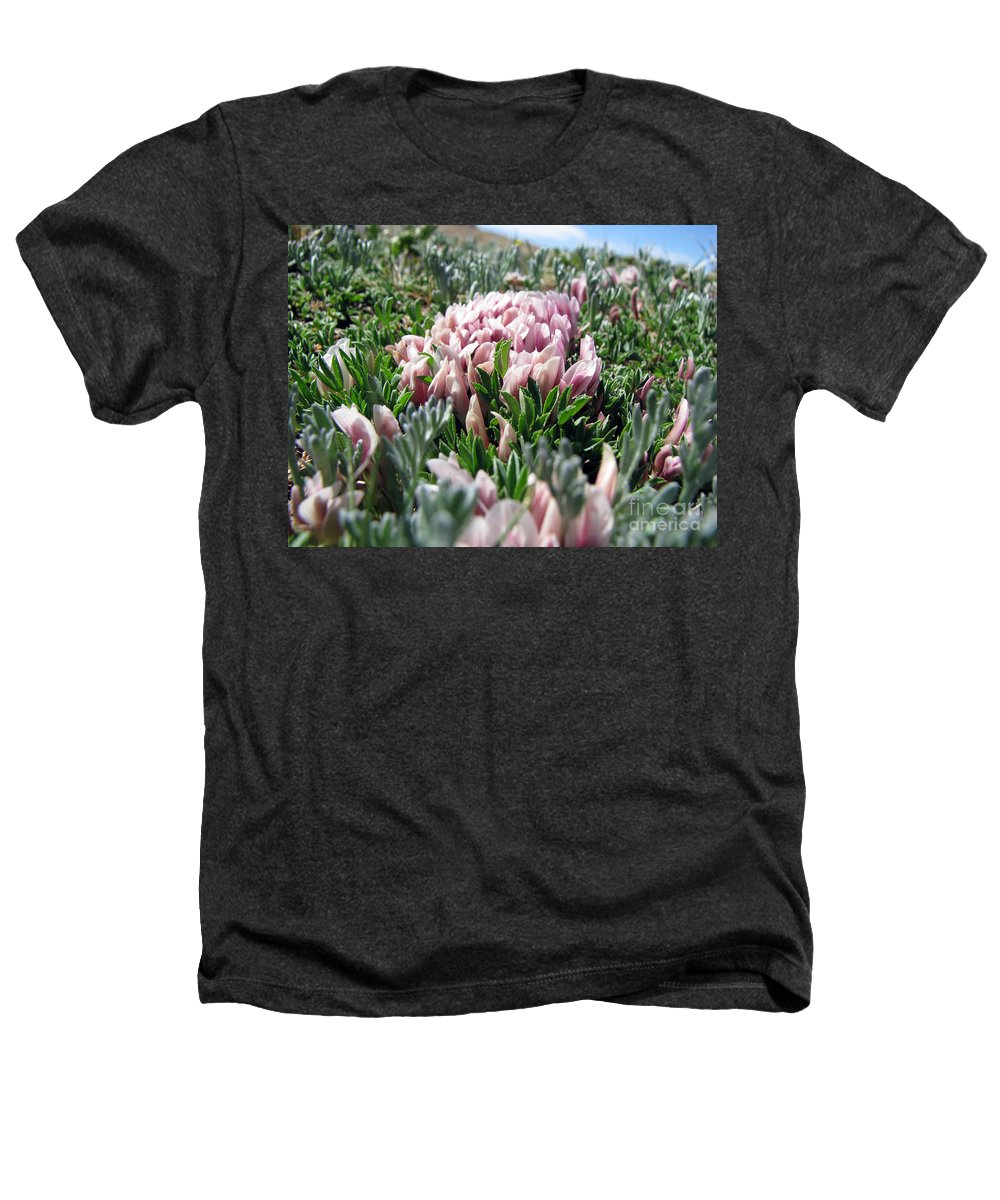 Flowers Heathers T-Shirt featuring the photograph Flowers In The Alpine Tundra by Amanda Barcon