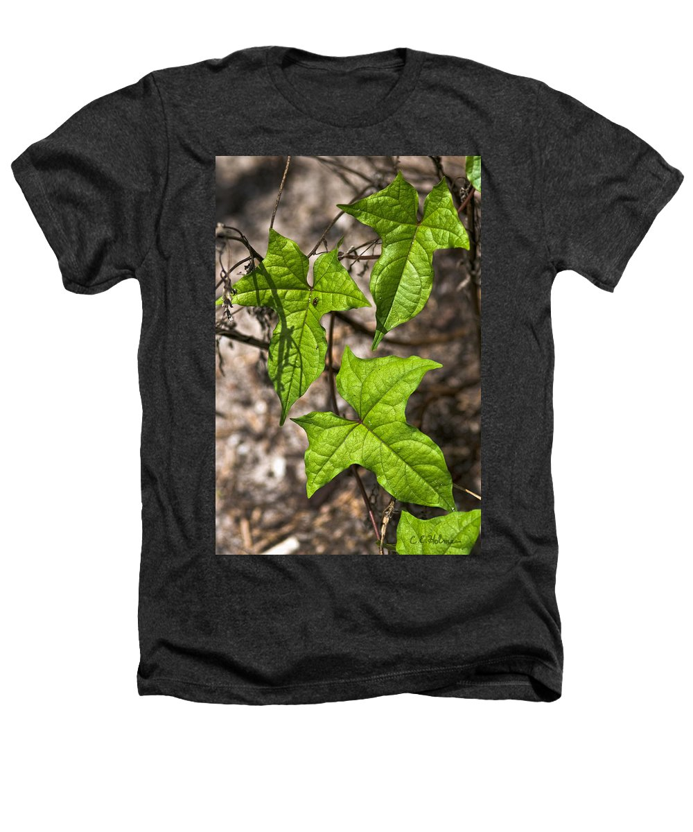 Green Heathers T-Shirt featuring the photograph Green Arrowheads by Christopher Holmes